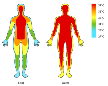 Heat clipart body heat. Free download clip art