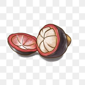 Pin on summer fruits. Heat clipart decoration