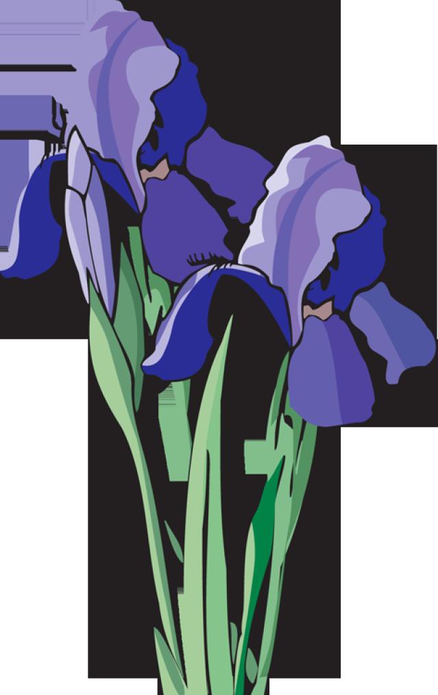 Web design development flower. Heaven clipart glories