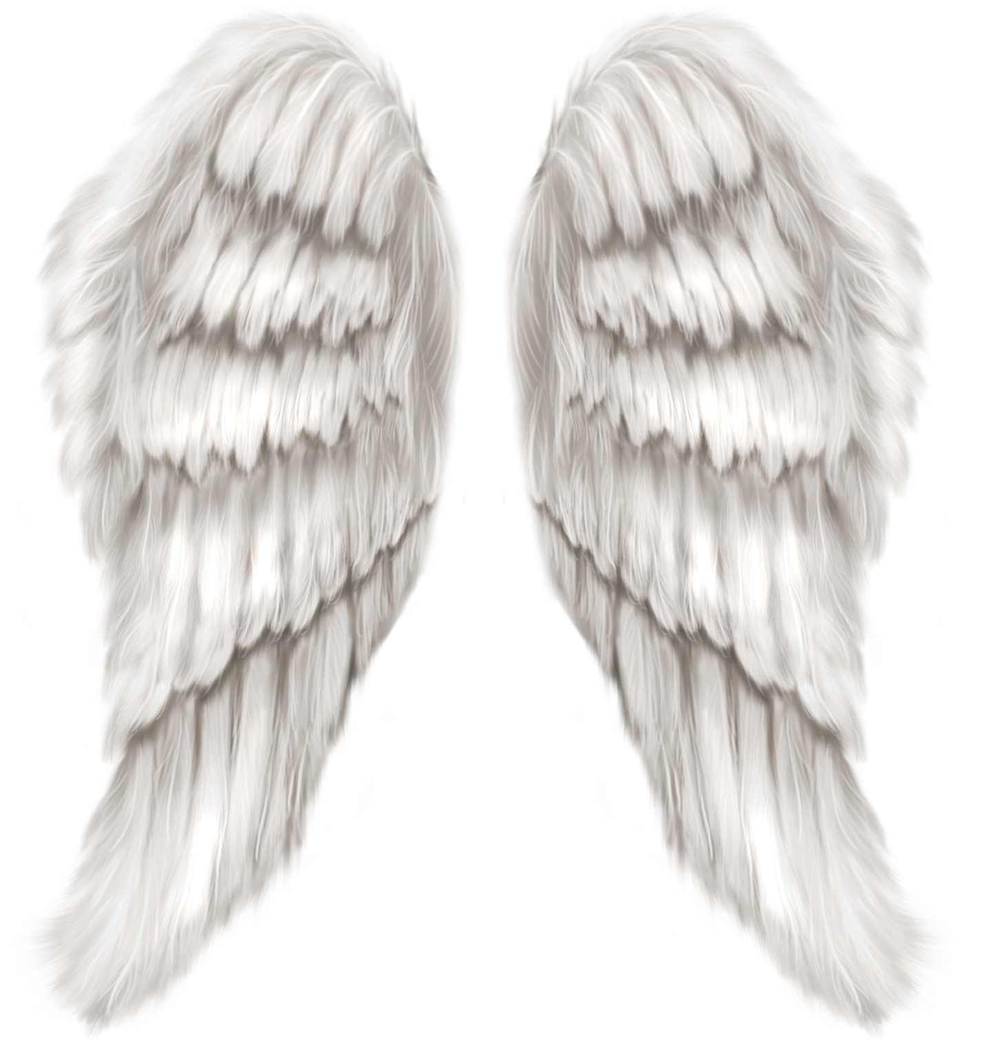 White angel wings transparent. Heaven clipart wing