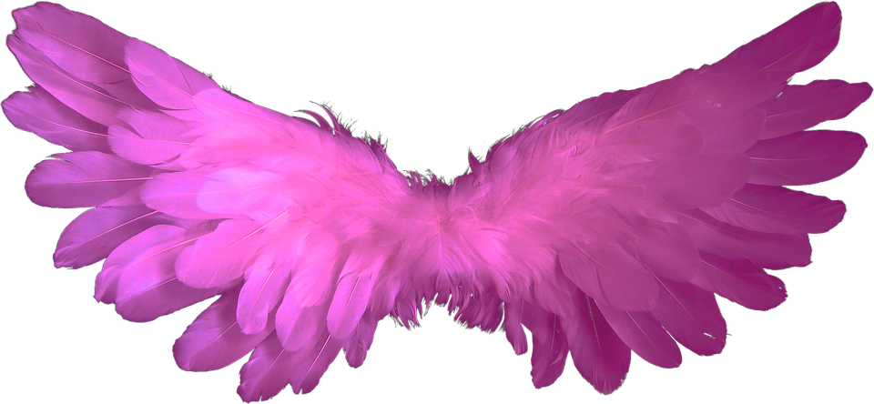 Heaven clipart wing. Free photo wings angel