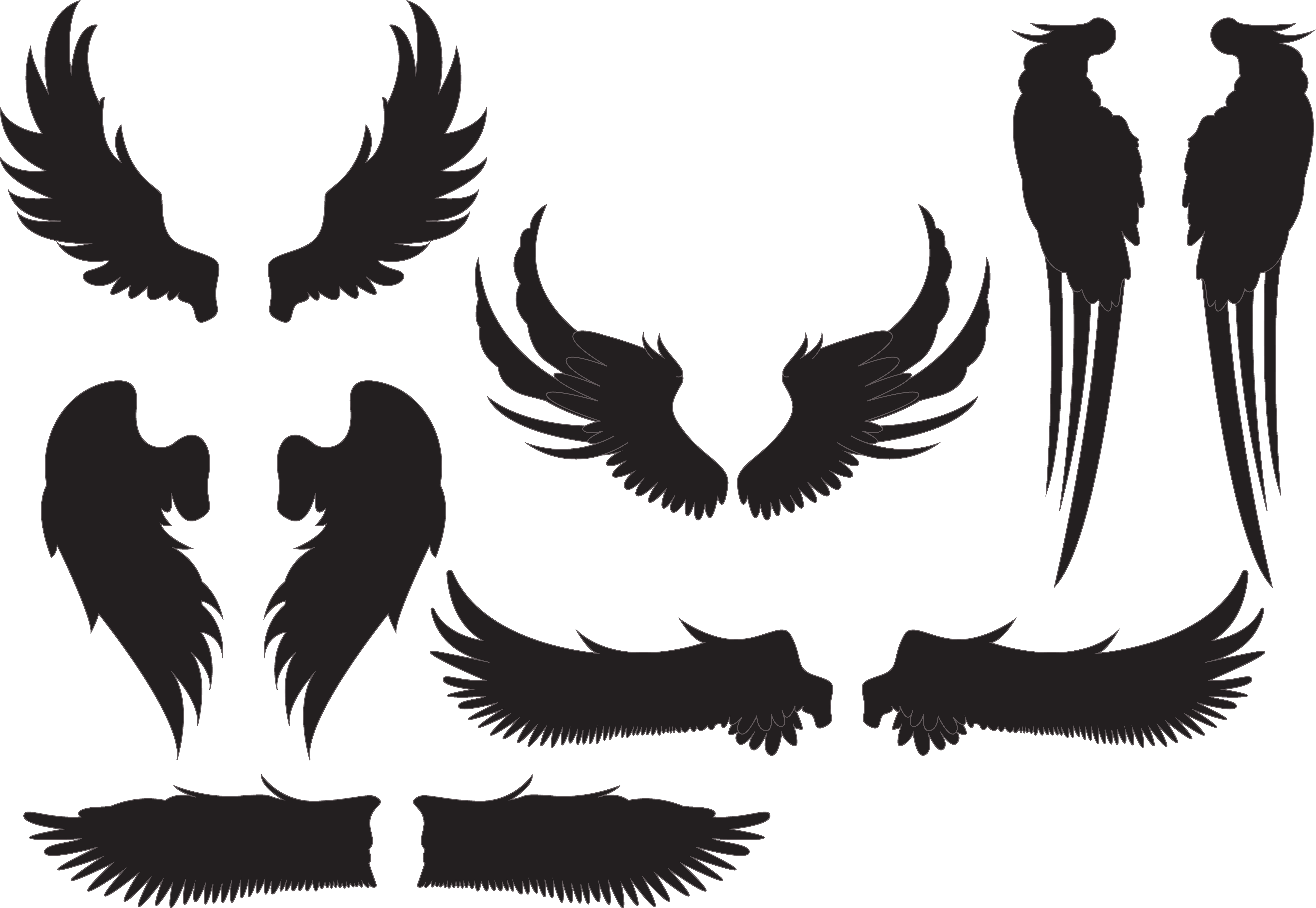 Silhouette at getdrawings com. Wing clipart stencil