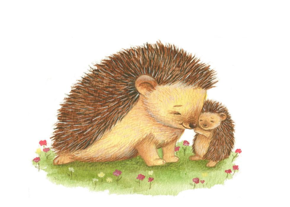 Hedgehog clipart baby hedgehog. Clipartpost
