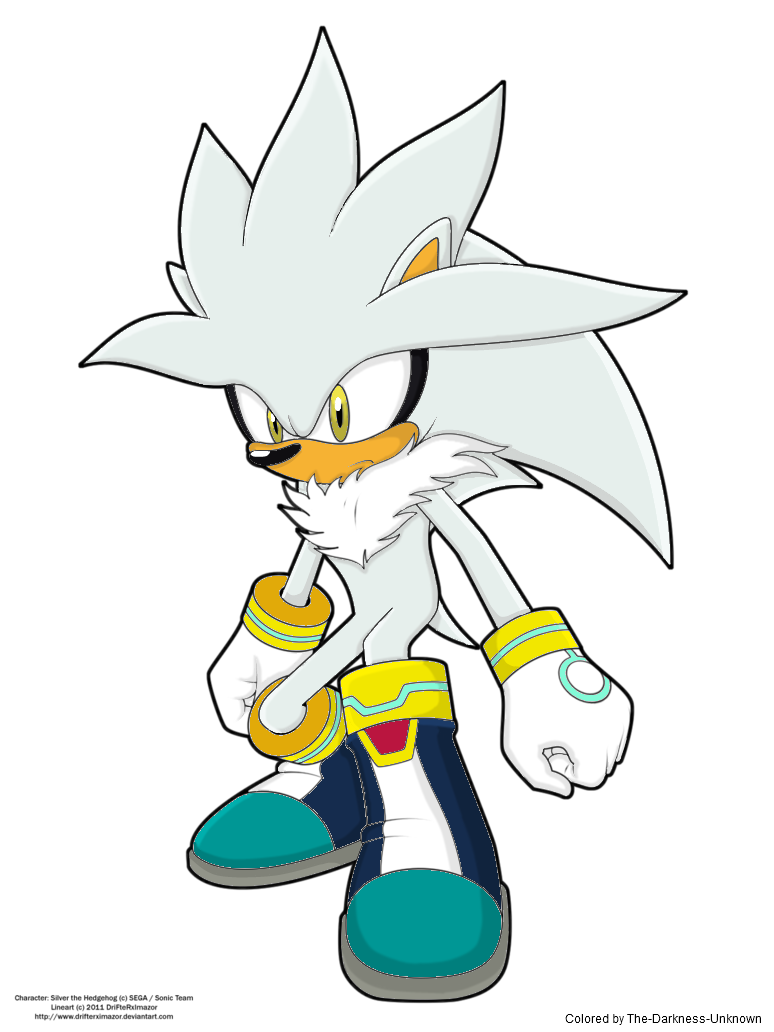 Silver the colored by. Hedgehog clipart colorful
