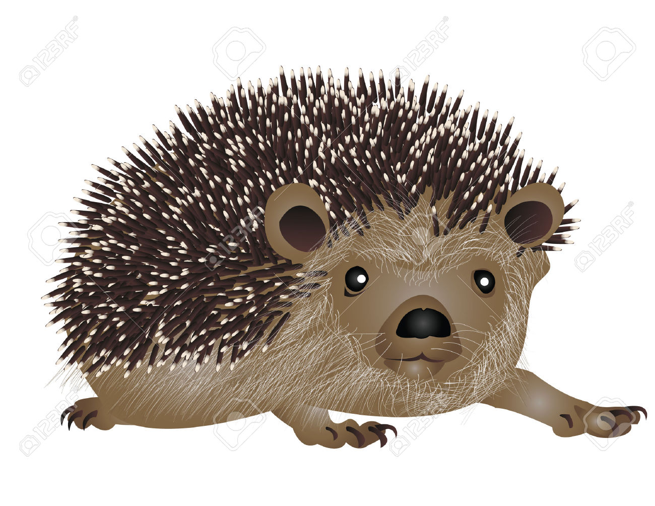 Hedgehog clipart comic. Fans clipartpost