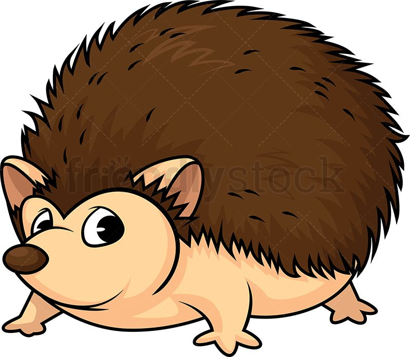 Wild of animals cartoon. Hedgehog clipart comic