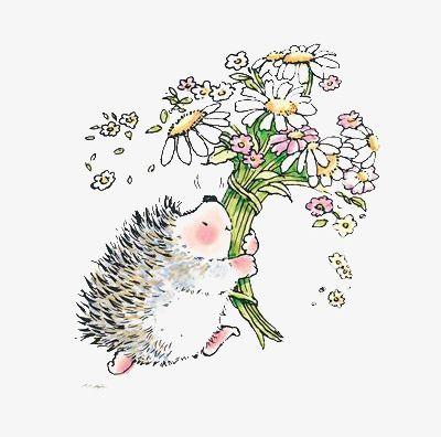 Hedgehog clipart flower. Png animal cartoon