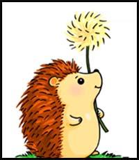 Hedgehog clipart simple. How to draw cartoon