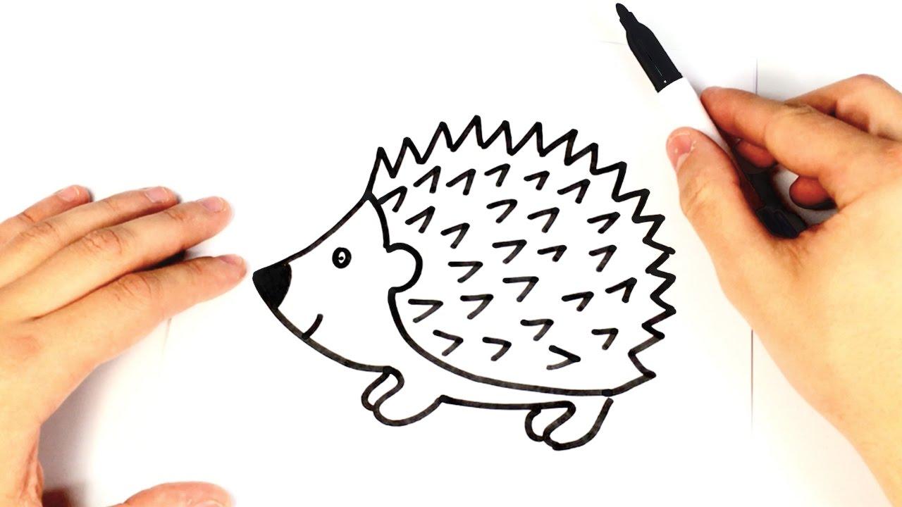 Hedgehog clipart simple cartoon. How to draw a