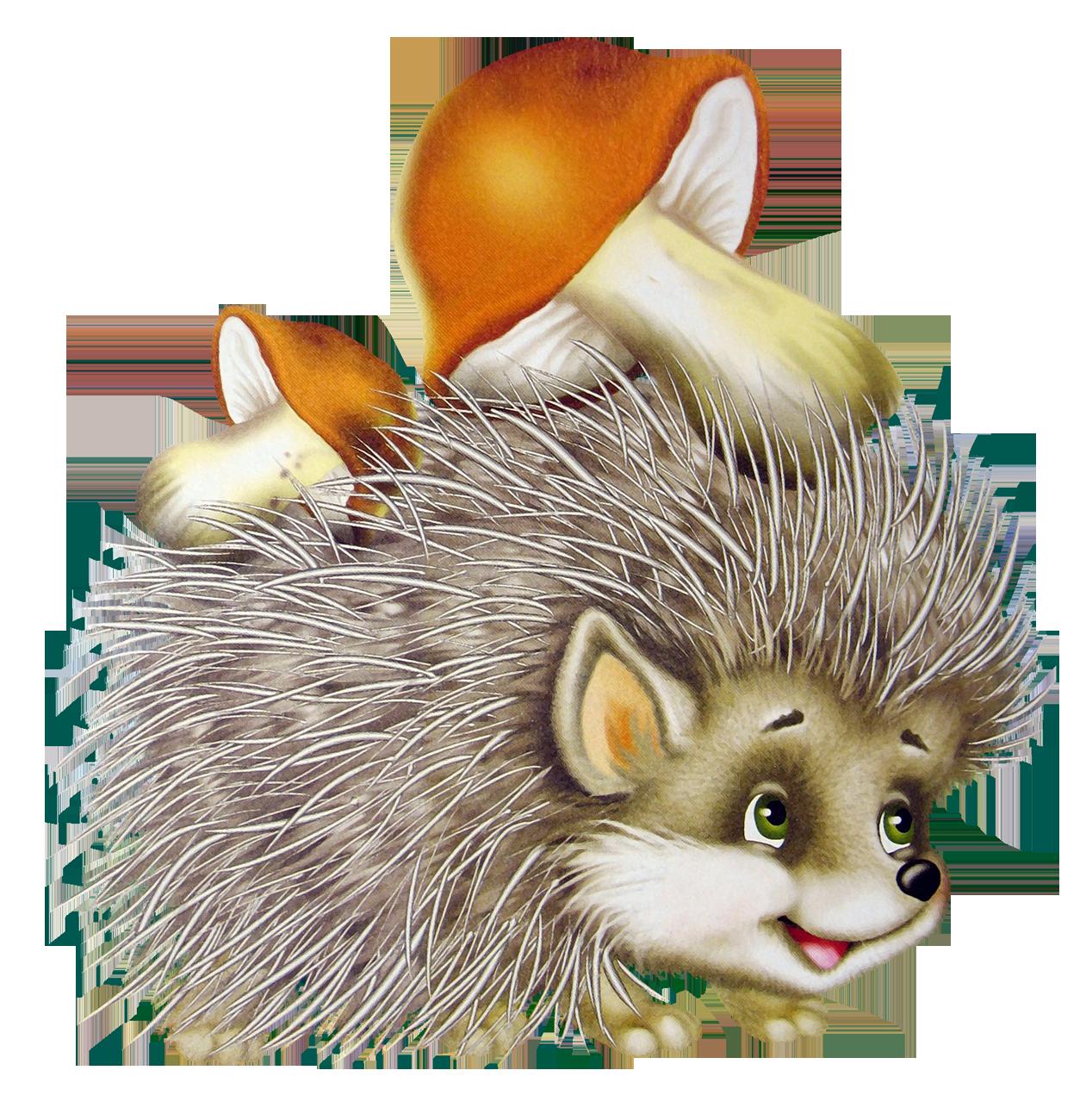 Png . Hedgehog clipart sleeping