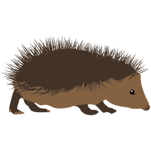 Cliparts of free download. Hedgehog clipart spiky