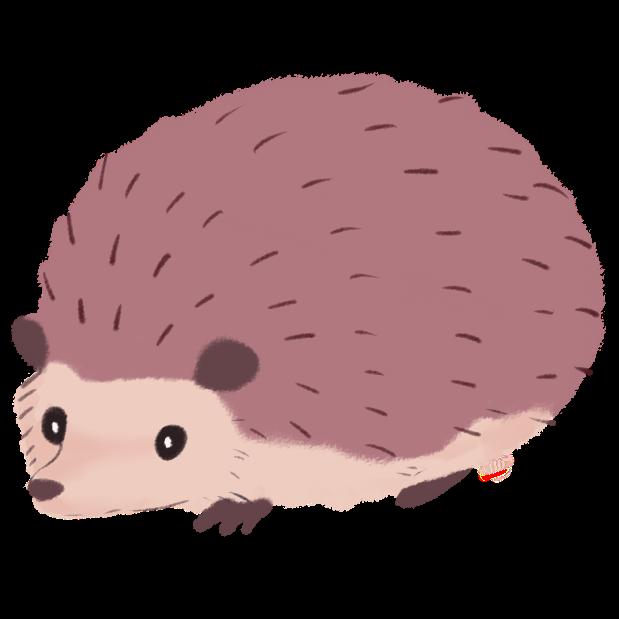 Hedgehog clipart transparent background. Download png images backgrounds