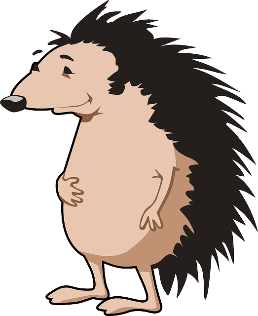 Hedgehog clipart urchin. Facts for kids cool