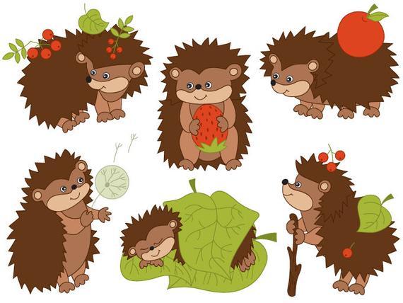 Hedgehogs digital woodland berry. Hedgehog clipart vector