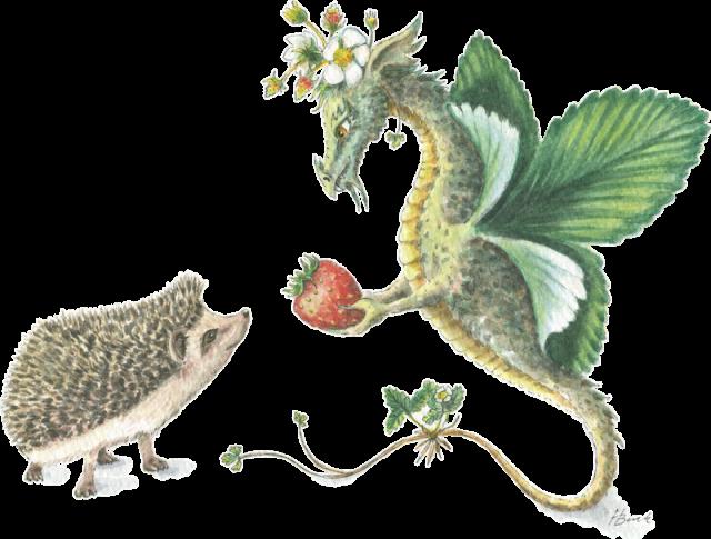 The dragons of heidi. Hedgehog clipart watercolor