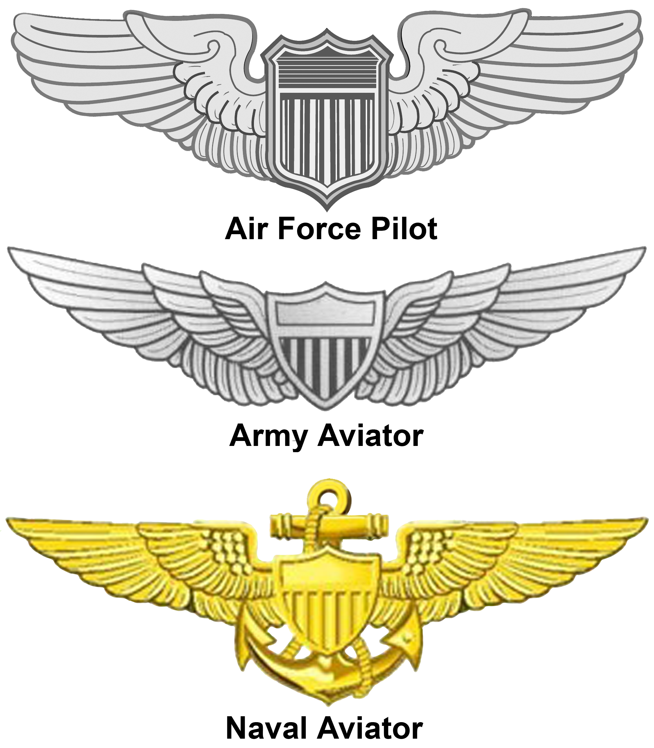 Steampunk clipart flight wing. United states aviator badge