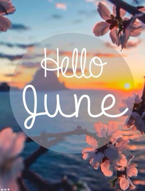 Hello June. How did i not