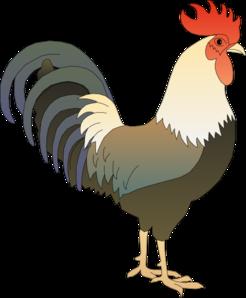 Hen clipart gallo. Rooster clip art various