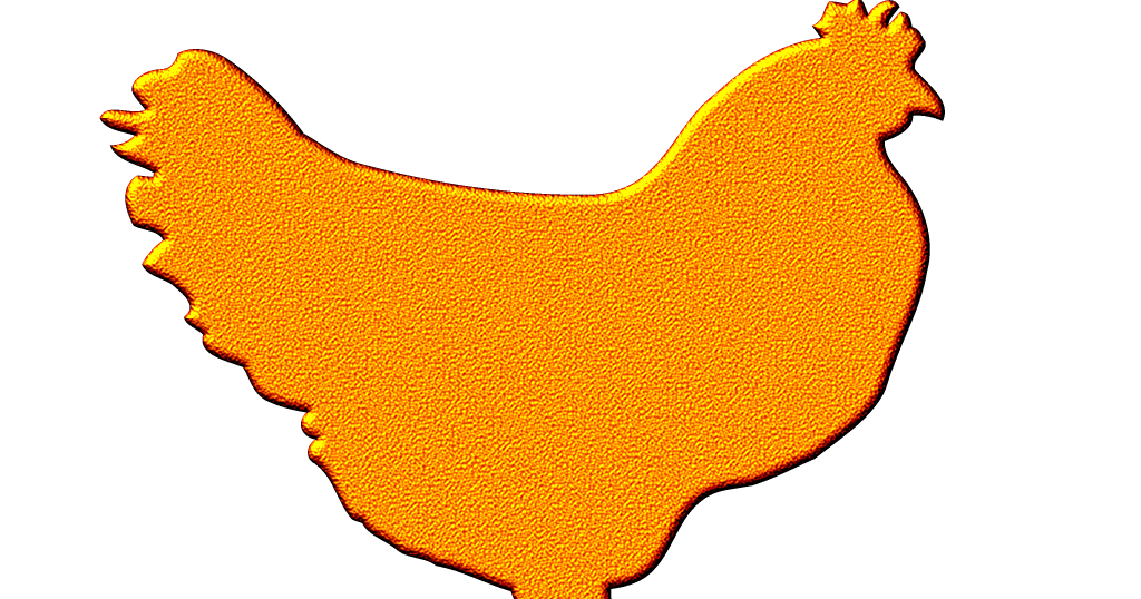 Yellow and red nosi. Hen clipart orange