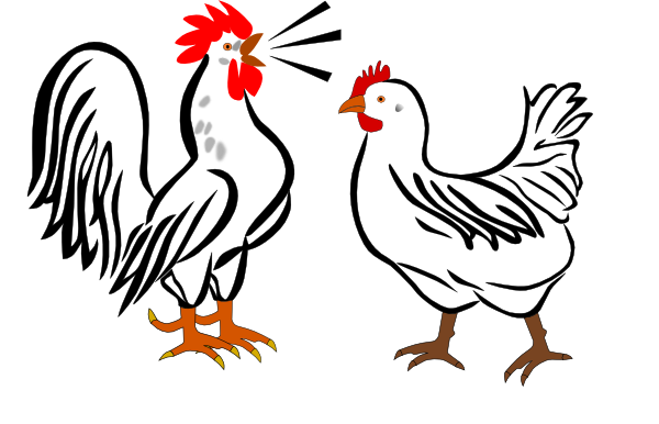 Hen clipart rooster. And clip art at