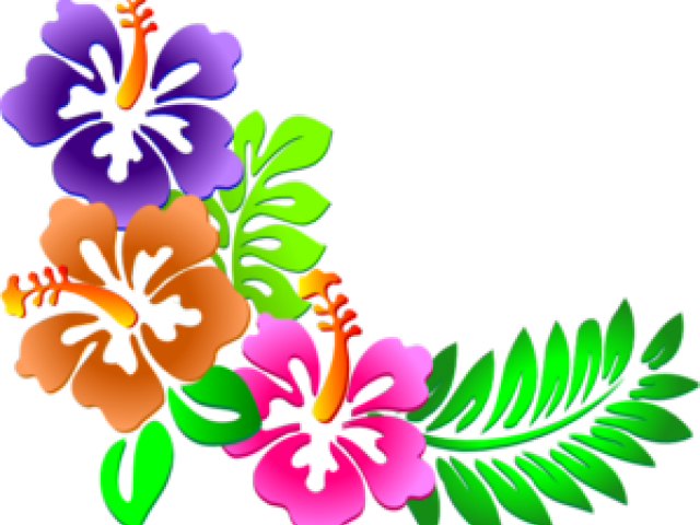 Hibiscus clipart animated. Latest cliparts page dumielauxepices