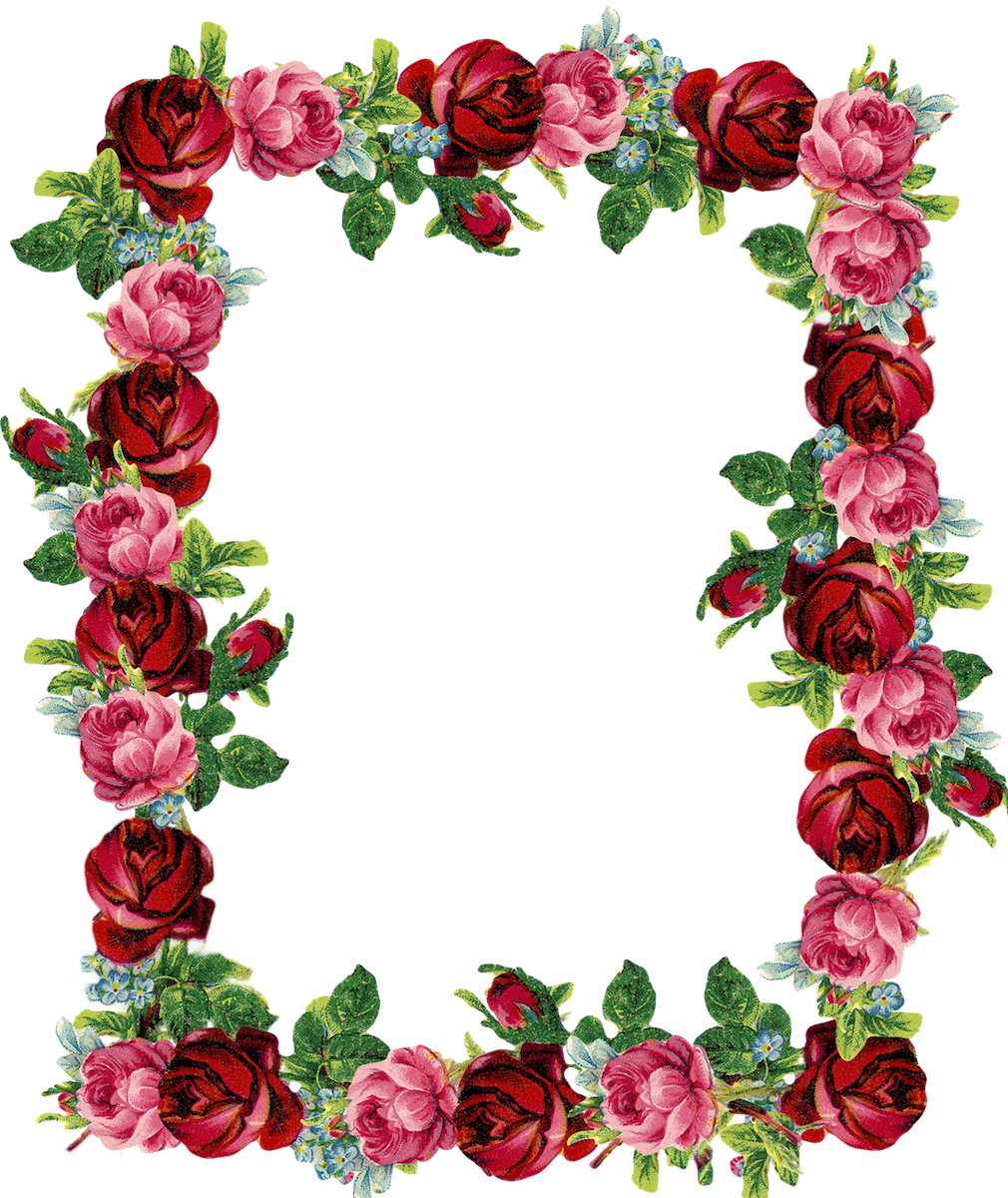 Rose border free download. Volleyball clipart vintage