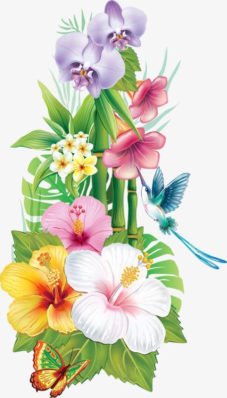 Flowers . Hummingbird clipart jungle flower