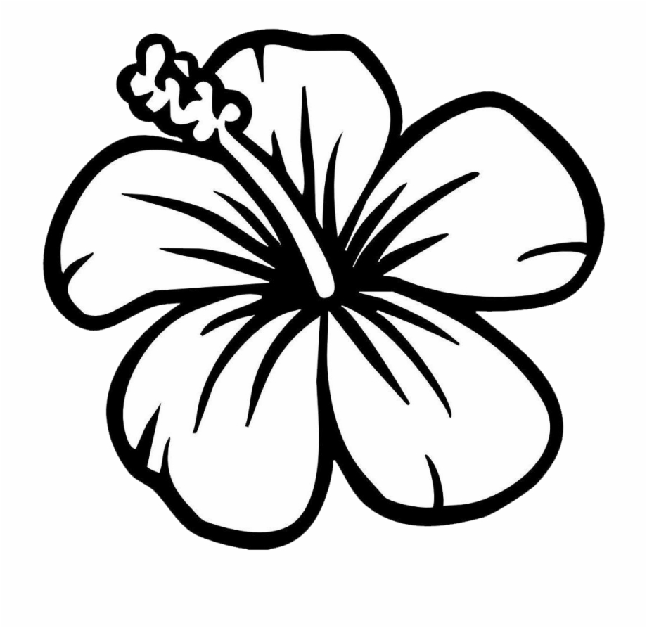 Hibiscus clipart black and white. Sunflower