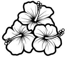 Hibiscus clipart black and white. Hawaiian free download best