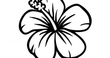 Hibiscus clipart black and white. Station