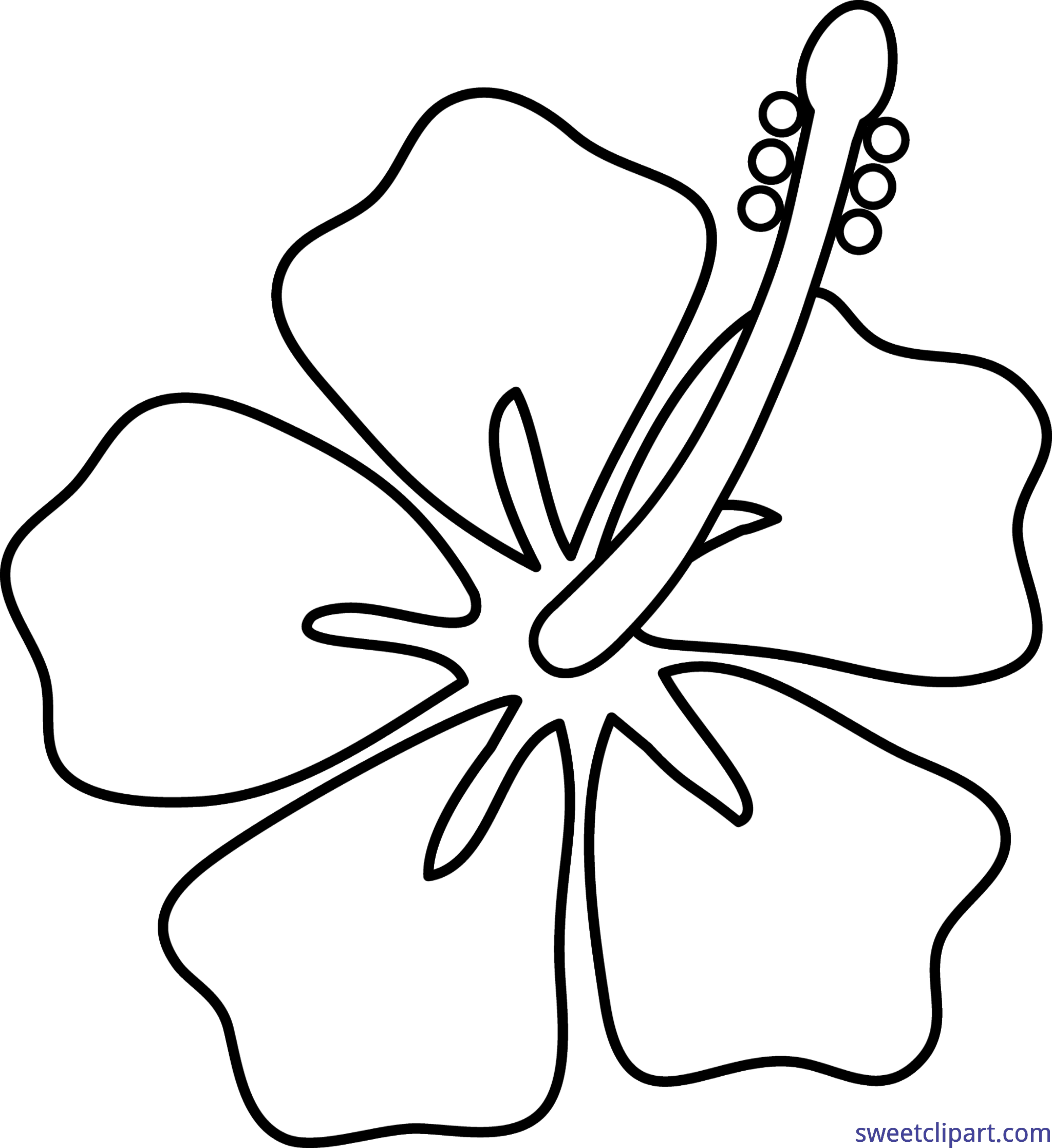 Flower lineart clip art. Hibiscus clipart black and white