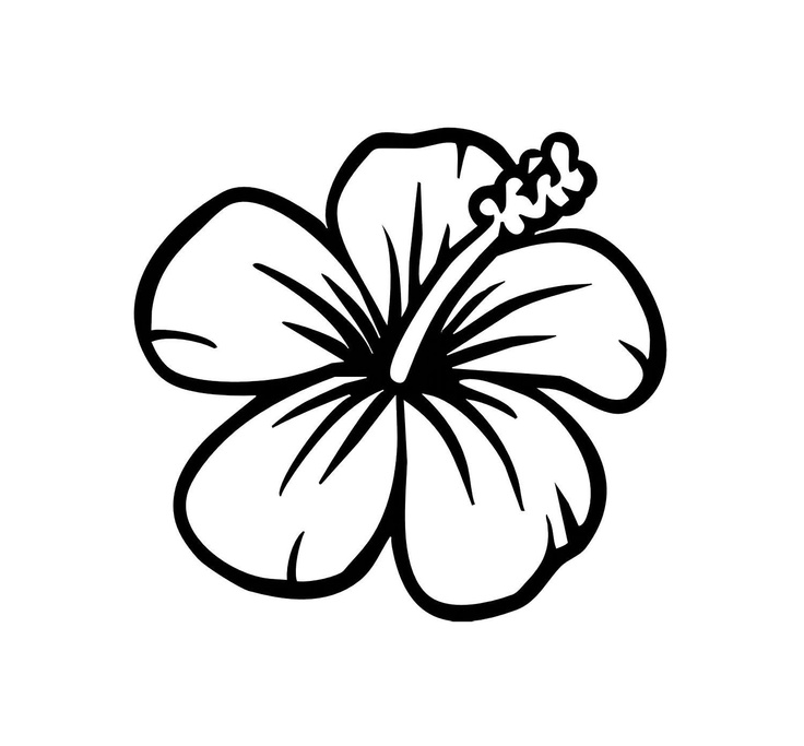 Free download clip art. Hibiscus clipart black and white