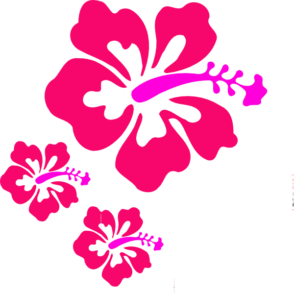 Hibiscus clipart blue hibiscus. Coral png svg clip