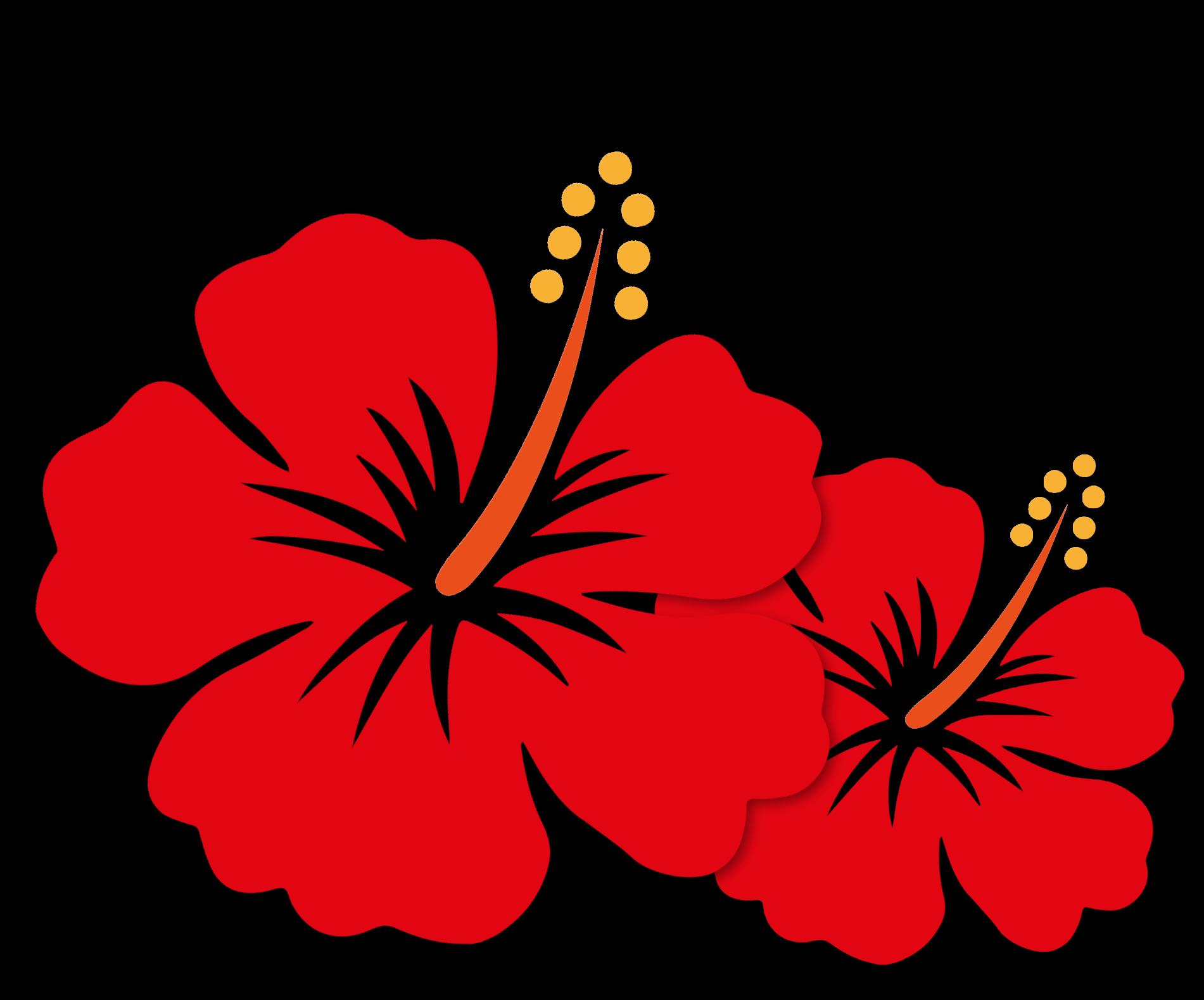 Menakjubkan 30 Lukisan Gambar Bunga Raya Kartun Arti Gambar