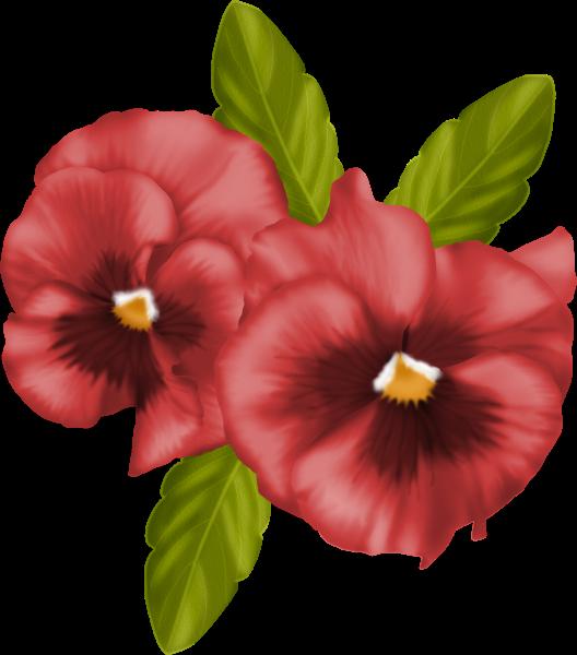 Hibiscus clipart christmas. Fl res pinterest decoupage
