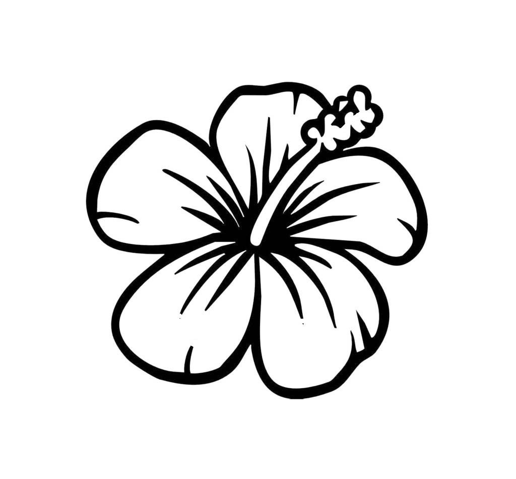 Best coloring pages for. Hibiscus clipart colouring