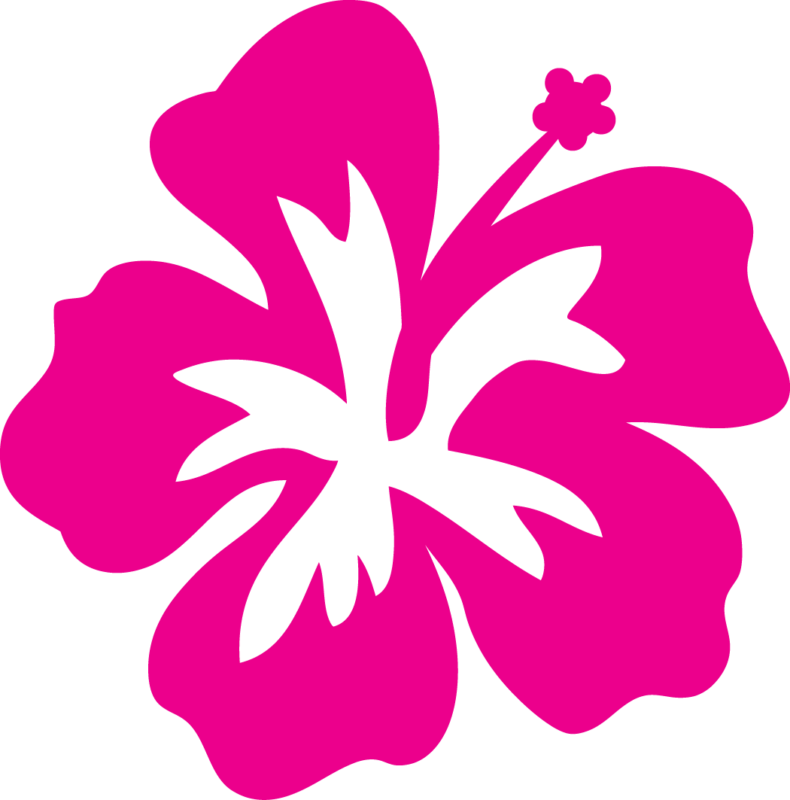 Free images pictures download. Hibiscus clipart cute