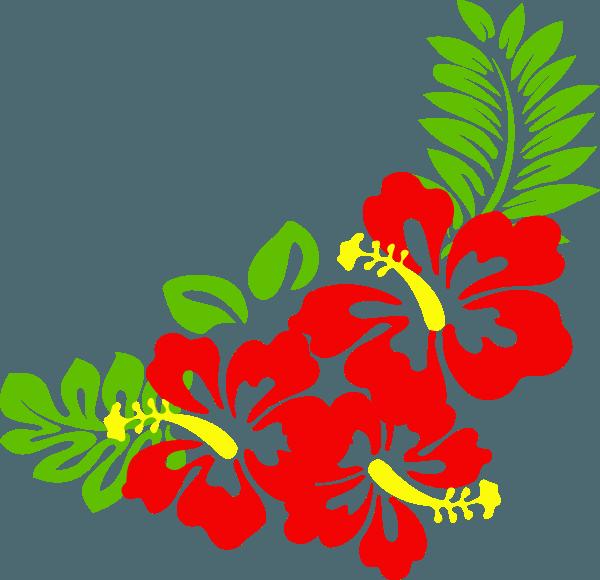 Hibiscus clipart cute. Tropical clip art border