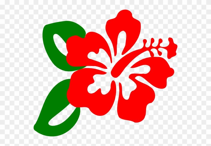 Clip art flower png. Hibiscus clipart cute
