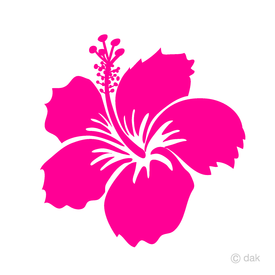 Hibiscus clipart cute. Pink flower free picture
