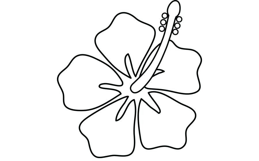 Drawing free download best. Hibiscus clipart drawn flower