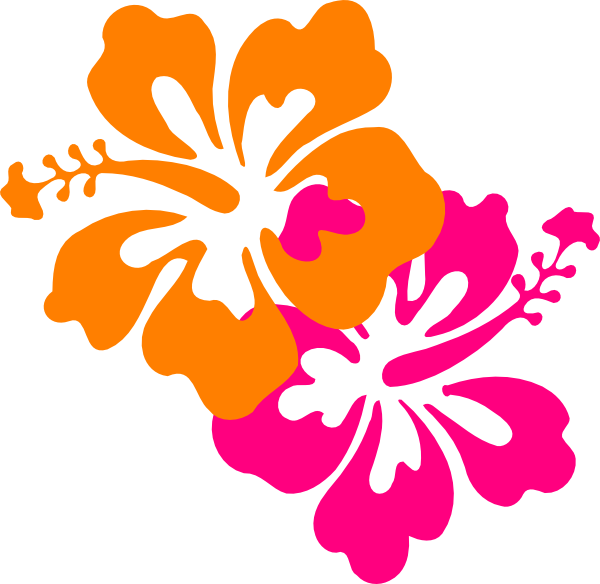 Hibiscus clipart flower boarder.  collection of png