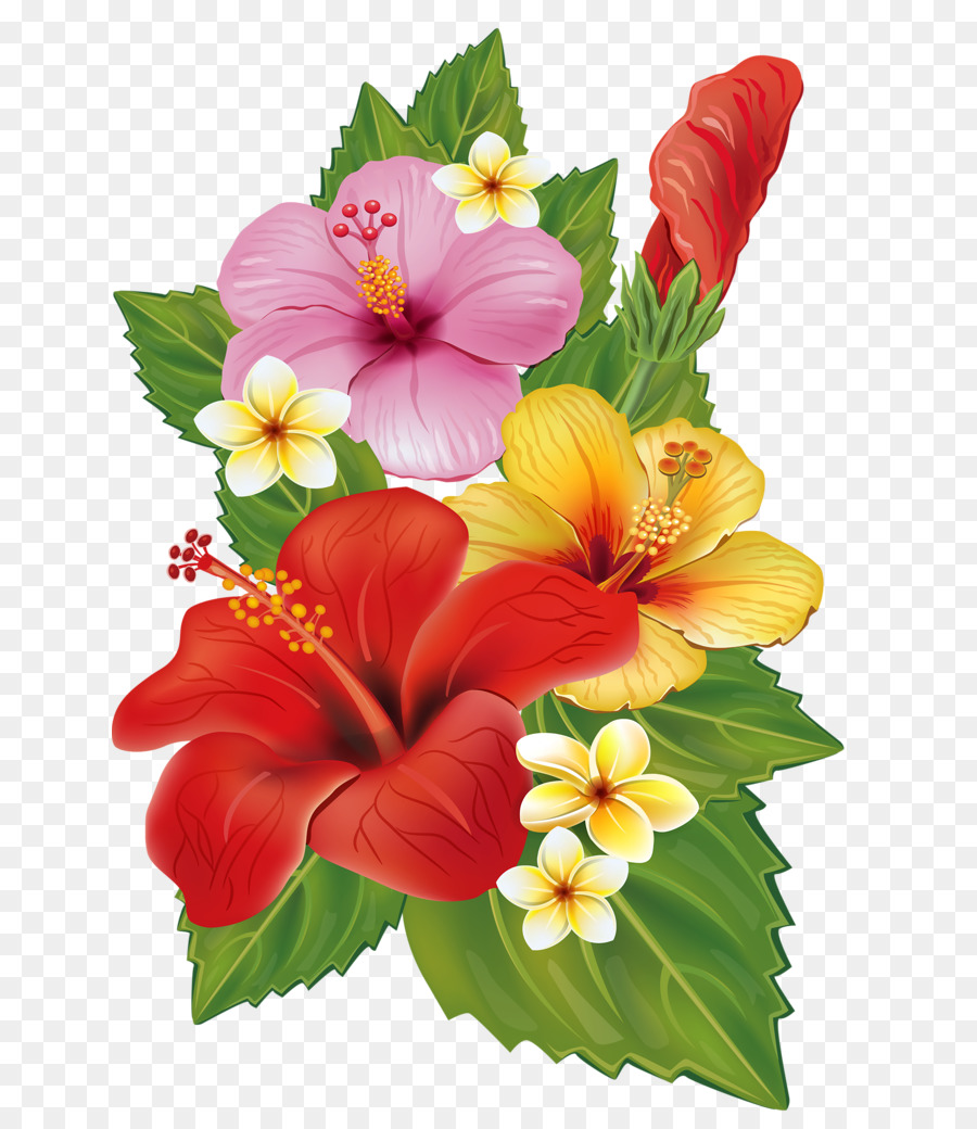 Hibiscus clipart flower real. Floral background
