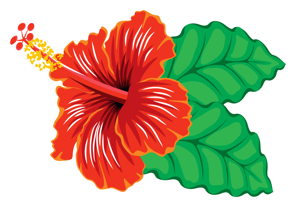 Onlinelabels clip art. Hibiscus clipart flower real