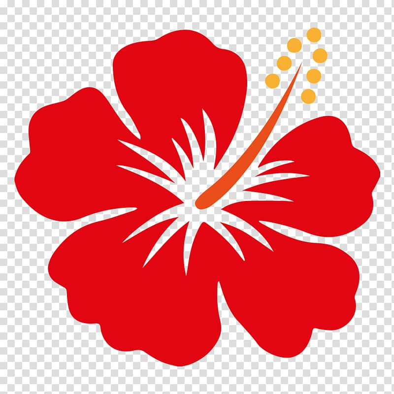 Hibiscus clipart flower real. Red illustration hawaii shoeblackplant