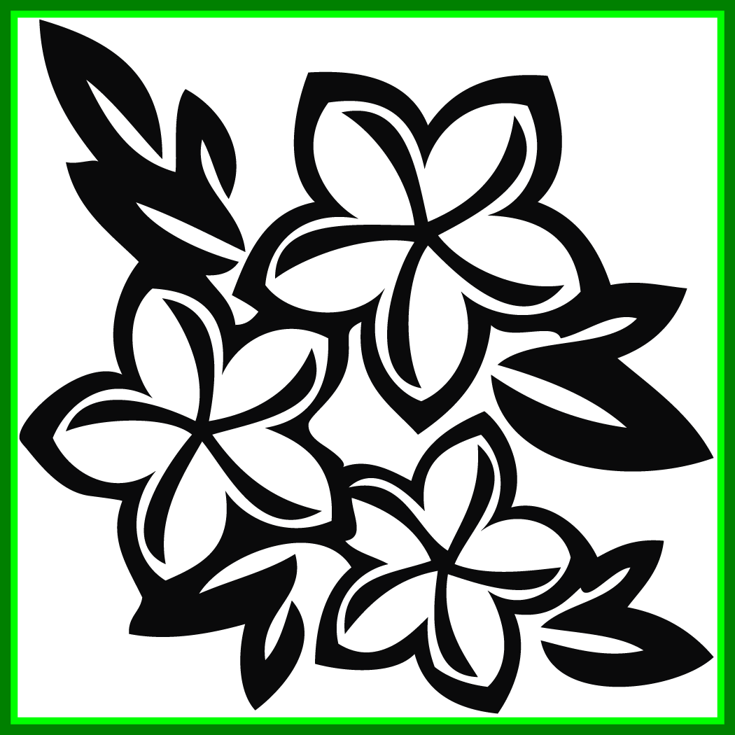 Collection of free frangipanni. Hibiscus clipart flower samoan