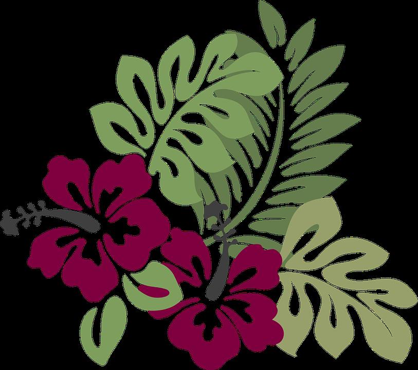 Hibiscus clipart garland. Imagem gratis no pixabay