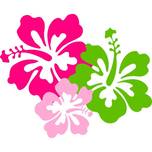 Pink clip art liked. Hibiscus clipart green hibiscus flower
