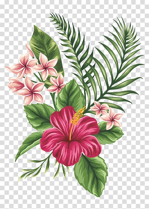 Drawing flower sketch painted. Hibiscus clipart hand drawn
