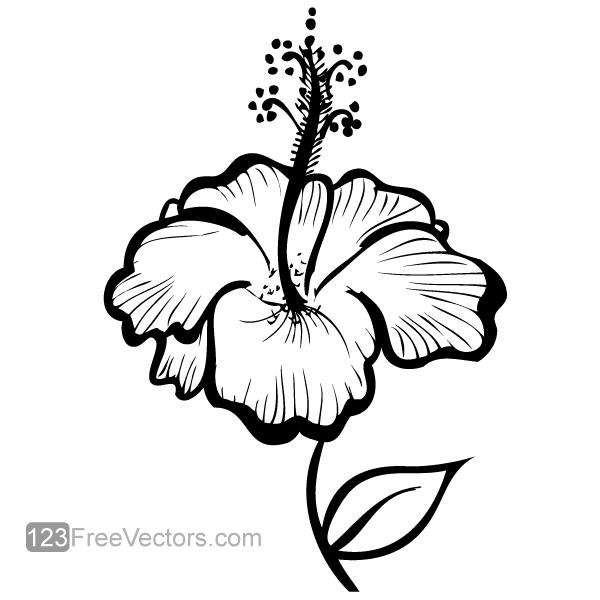 Hibiscus clipart hand drawn. Flower free vectors ui